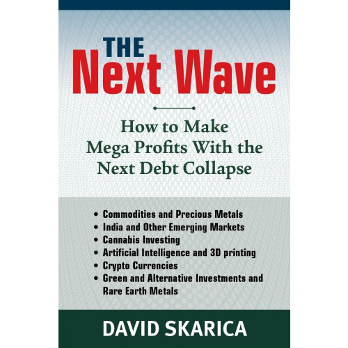 The Next Wave: How to Make Mega Profits with the Next Debt Collapse